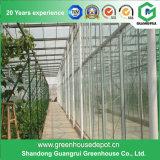 花のための農業の鉄骨構造のポリカーボネートシートの温室