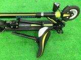 Foldable電気バイクのEバイク