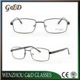 Het nieuwe Populaire Optische Frame Tb3881 van het Oogglas van Eyewear van het Metaal van de Stijl