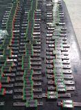 A transmissão linear motorizada dos guias parte os trilhos de guia lineares