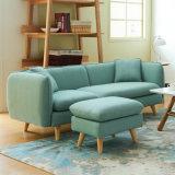 Sofa-gesetzte Entwurfs-modernes Sofa für kleines Wohnzimmer