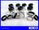 Elastomer-Gebrüll-mechanische Dichtung as-E20 ersetzen AES P02