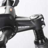 [هوت-سل] درّاجة كهربائيّة خضراء مدينة درّاجة مع [36ف250و] محرك [مإكس]