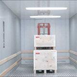 Aufbauendes preiswertes elektrisches Waren-Fracht-Otis-Ladung-Waren-Höhenruder