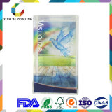 High End visualizó la caja de embalaje de PVC / Pet / PP con doble tamaño de impresión