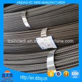 5mm Schnecken-PC Stahldraht