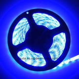 12V Blue SMD 5630 LED Strip Light met Ce Approved