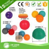 Bola anti los 25cm de la yoga de la aptitud de la gimnasia de la bola de Pilates de la explosión del PVC del SGS de la venta caliente No3-1 mini los 30cm