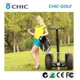 2016電気ゴルフカートモーター、ゴルフカートの車輪、ゴルフスクーターの製造業者
