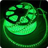 5050 fornitore di colore della striscia 60LED RGB del LED