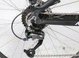 Bafang 최대 2마리의 세대 Bafang 센터 모터를 가진 네덜란드 사람 디자인 700c 산 E 자전거