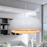 Lamp van de Tegenhanger van de Levering van Zhonshan de Binnen Moderne voor Decoratie