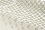 Paliers ergonomiques de latex de confort supplémentaire avec la couverture Zippered amovible
