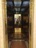 Селитебный подъем дома лифта с высоким качеством