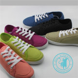 Ботинки впрыски ботинок холстины ботинок людей/женщин цветастые (SNC-011307)