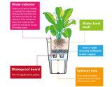 Бак плантатора для вала, навальных пластичных цветочных горшков, цветастых пластичных цветочных горшков