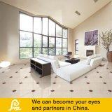 熱い床および壁またはNavona/600X600mm (NAV6001/NAV6002/NAV6003)のための販売によって/Porcelainの磨かれるタイル