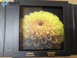 Стекло Tempered низкого утюга солнечное/анти- отражательное стекло покрытия (AR-TP)