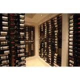 Cremagliera fissata al muro della bottiglia di vino della visualizzazione di immagazzinamento in la bottiglia DIY di Singel