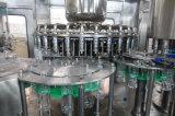 Máquina de embotellado de llavero del animal doméstico del agua de China del precio barato automático completo
