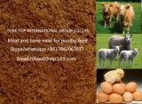 55% Viande et farine Repas Viande Repas osseux Fourrage animal