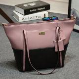 De Handtassen van de Ontwerper van de Botsing van de kleur vormen Trendy Ontwerper van het Merk Dame Emg4730