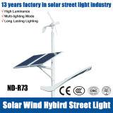 2016 luz de rua híbrida do diodo emissor de luz do Solar-Vento quente da venda 10W-60W