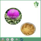 100% natürlicher Milch-Distel-Auszug, Silymarin 80%, 98% UV; Silybin 30% ~ 98% HPLC