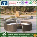 Mobilia rotonda moderna del commercio all'ingrosso rotondo del sofà rattan/del vimine (TG-JW25)