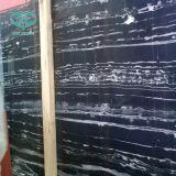 Lajes brancas do mármore do dragão da tira/veia do preto para o projeto