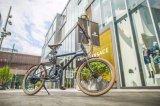 vélo de 250W E avec 36V