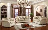 Il sofà americano ha impostato nel colore beige per l'insieme di salone