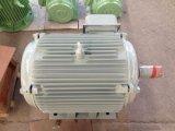 삼상 AC를 가진 10kw 100rpm 영구 자석 발전기