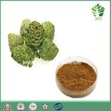 100% 자연적인 Cynarin 2%, 5% 의 페놀 산 2.5%, 5% 의 Caffeoylquinic 산 3% 의 5% 아티초크 추출