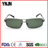Новые приходя двойные солнечные очки 2017 Mens квадрата моста (YJ-F8395)