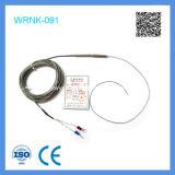 Tipo termocople acorazado flexible de Shangai Feilong K