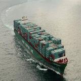 Professionele Overzeese Vrachtvervoerder van China aan Jordanië