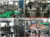 性質のフルーツの込み合いの生産ラインか機械装置を処理するフルーツジュース