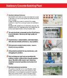 Het Groeperen van Truemax Installatie - Professioneel Ontwerp - Beste Keus voor de Projecten van de Installatie en van de Bouw van Ready-Mix Beton