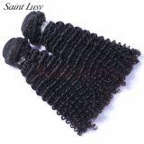 Unproccessedの編む毛のバージンのRemyのブラジルの毛の拡張(SL-HE7A006)