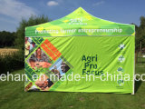 2016 10FT*10FT Outdoor Folding Tent con Custom Print