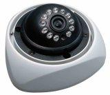保証CCTV CCDのカメラ(NV-D6201BR)