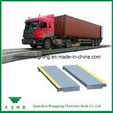 Scale del camion per la pesatura del container