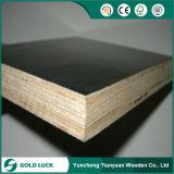 La pellicola materiale Shuttering della costruzione di edifici ha affrontato il compensato della cassaforma di Plywoodconcrete---Fortuna dell'oro