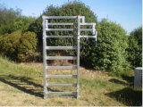Hochleistungsbauernhof-Stahlrohr-Zaun für Pferd/Vieh mit heißem eingetauchtem Galvanized (SF-001)