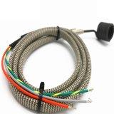 Calefator de bobina personalizado da mola para o corredor quente