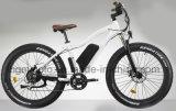 Vélo électrique 500W de vente de neige de vélo de plage de montagne chaude de croiseur