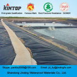 HDPE Geomembrane do polietileno high-density com ASTM