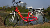 اشتريت [لوو بريس] إمرأة دراجة كهربائيّة في الصين
