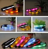 LED 빛을%s 가진 최신 디자인 애완 동물 또는 개 목걸이